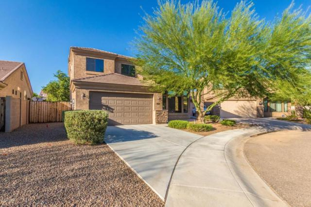 3810 E Sunstream Way, Phoenix, AZ 85032 (MLS #5822220) :: Santizo Realty Group