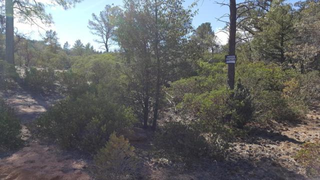 700 E Tyler Parkway, Payson, AZ 85541 (MLS #5822229) :: Keller Williams Legacy One Realty