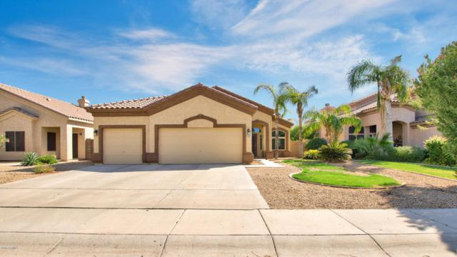 637 E Ranch Road, Gilbert, AZ 85296 (MLS #5822235) :: Lux Home Group at  Keller Williams Realty Phoenix