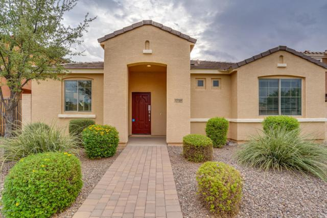 2728 E Megan Street, Gilbert, AZ 85295 (MLS #5822246) :: The Jesse Herfel Real Estate Group