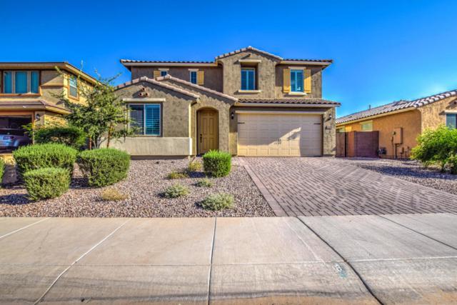 2699 E Daniel Drive, Gilbert, AZ 85298 (MLS #5822271) :: The Jesse Herfel Real Estate Group