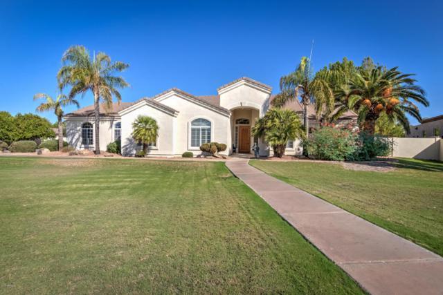 3746 E Omega Circle, Mesa, AZ 85215 (MLS #5822285) :: Occasio Realty