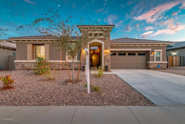 18631 W Beryl Avenue, Waddell, AZ 85355 (MLS #5822344) :: Kelly Cook Real Estate Group
