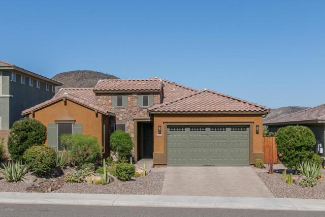 13122 W Calle De Baca, Peoria, AZ 85383 (MLS #5822357) :: The Laughton Team