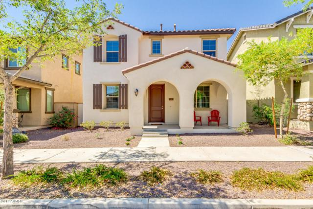 2378 N Valley View Drive, Buckeye, AZ 85396 (MLS #5822362) :: Lifestyle Partners Team