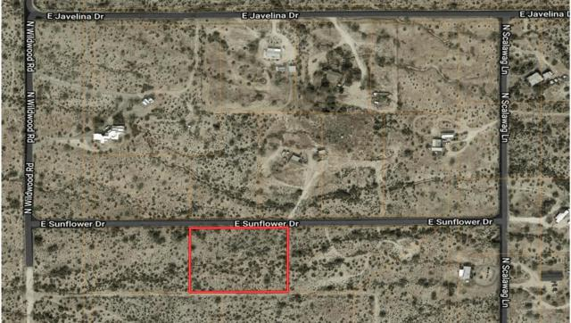 0 E Sunflower Drive, Florence, AZ 85132 (MLS #5822364) :: The Jesse Herfel Real Estate Group
