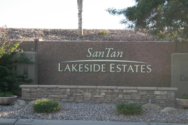 7431 S Joshua Tree Court, Queen Creek, AZ 85142 (MLS #5822381) :: The Garcia Group @ My Home Group