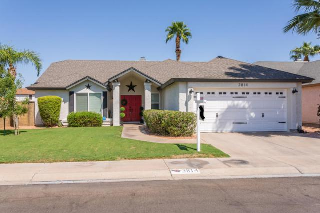 3814 E Carol Ann Way, Phoenix, AZ 85032 (MLS #5822395) :: The Daniel Montez Real Estate Group