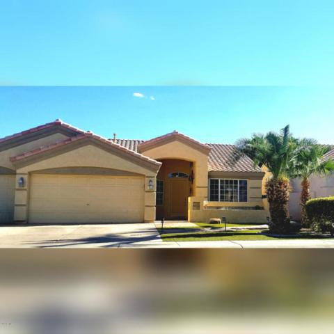 11605 W Laurelwood Lane, Avondale, AZ 85392 (MLS #5822399) :: Brett Tanner Home Selling Team
