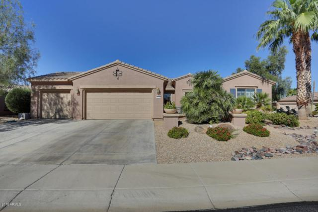 19734 N Tolby Creek Court, Surprise, AZ 85387 (MLS #5822433) :: The Wehner Group