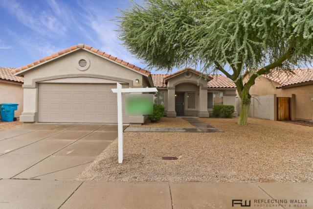 2948 E Pontiac Drive, Phoenix, AZ 85050 (MLS #5822439) :: Lux Home Group at  Keller Williams Realty Phoenix