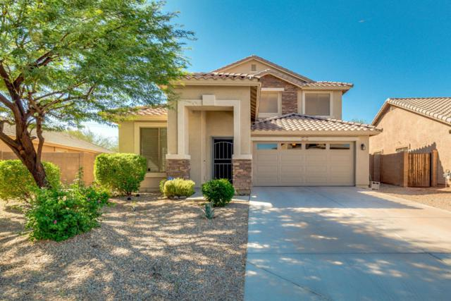 4650 W Shumway Farm Road, Laveen, AZ 85339 (MLS #5822536) :: Group 46:10