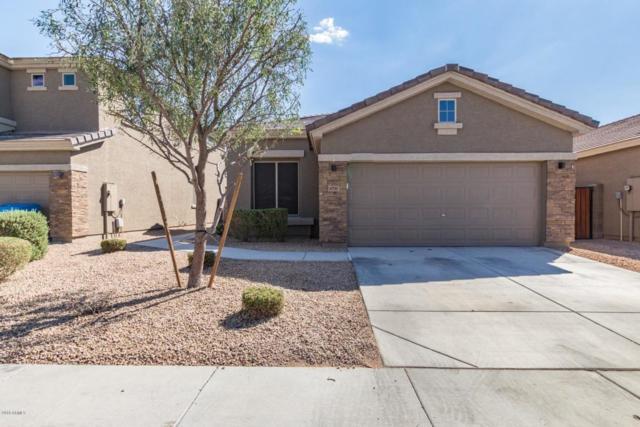4735 W Gelding Drive, Glendale, AZ 85306 (MLS #5822542) :: Sibbach Team - Realty One Group