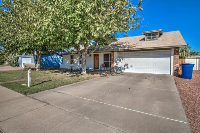 105 S 131 Street, Chandler, AZ 85225 (MLS #5822555) :: Group 46:10