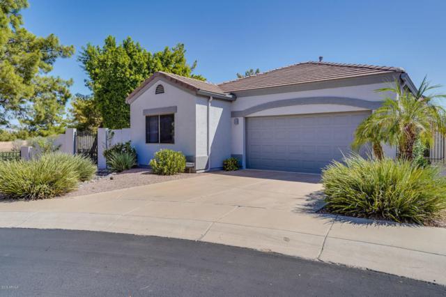 3341 E Fremont Road, Phoenix, AZ 85042 (MLS #5822558) :: Keller Williams Legacy One Realty