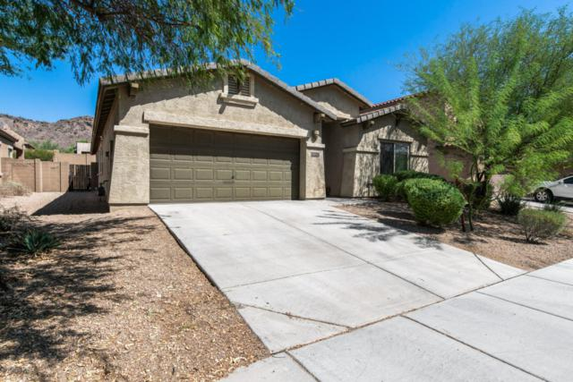 8452 W Alyssa Lane, Peoria, AZ 85383 (MLS #5822574) :: The Laughton Team
