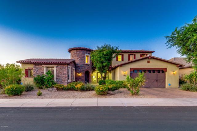 2822 E Warbler Road, Gilbert, AZ 85297 (MLS #5822600) :: Team Wilson Real Estate