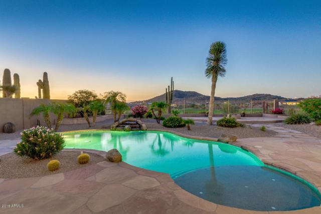 18148 W Narramore Road, Goodyear, AZ 85338 (MLS #5822636) :: Brett Tanner Home Selling Team