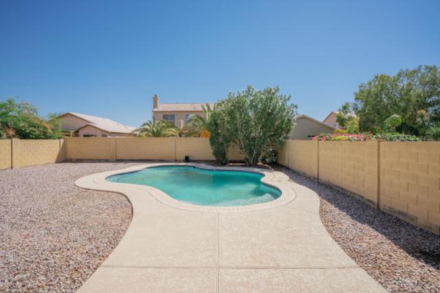 15123 W Taylor Street, Goodyear, AZ 85338 (MLS #5822651) :: Brett Tanner Home Selling Team