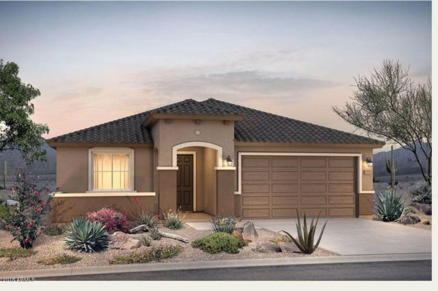 21325 N 260TH Lane, Buckeye, AZ 85396 (MLS #5822667) :: Arizona 1 Real Estate Team