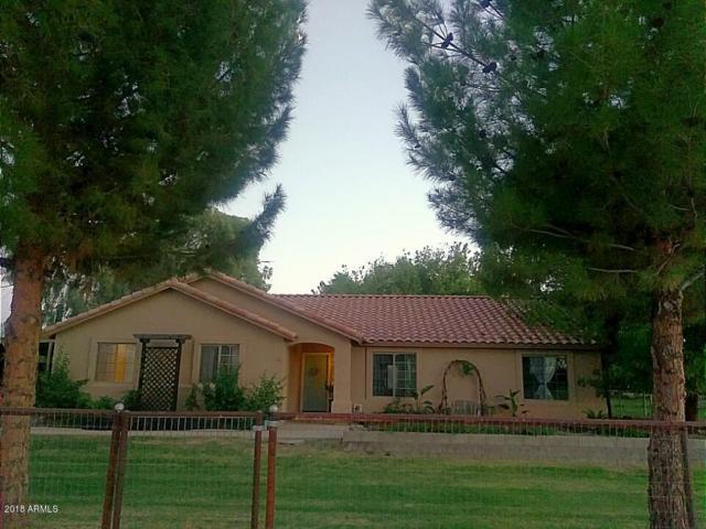 26114 S Tangelo Avenue, Queen Creek, AZ 85142 (MLS #5822692) :: Team Wilson Real Estate