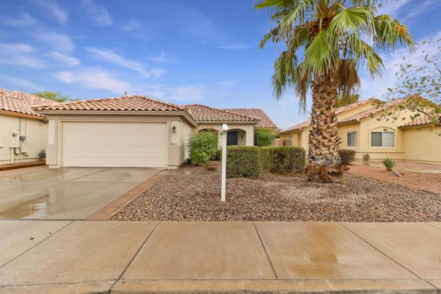 16111 W Sherman Street, Goodyear, AZ 85338 (MLS #5822696) :: Brett Tanner Home Selling Team