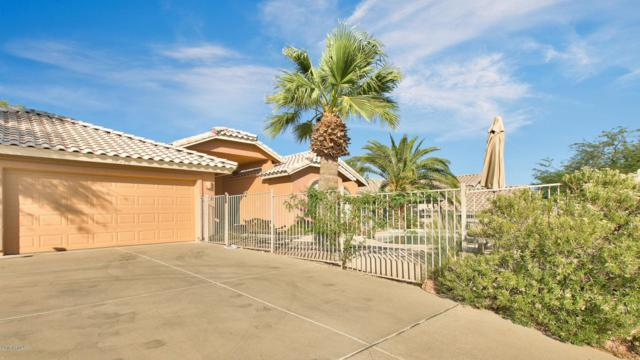 15746 E Sycamore Drive, Fountain Hills, AZ 85268 (MLS #5822757) :: Team Wilson Real Estate