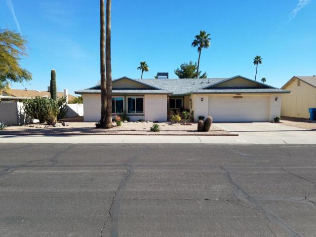 11211 S Shoshoni Drive, Phoenix, AZ 85044 (MLS #5822775) :: Team Wilson Real Estate