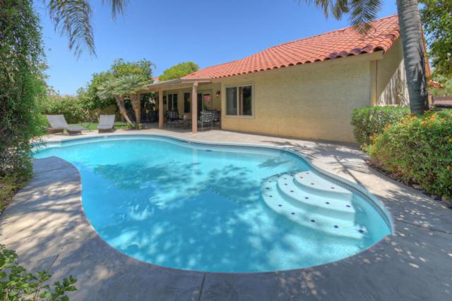 10527 E Terra Drive, Scottsdale, AZ 85258 (MLS #5822777) :: RE/MAX Excalibur