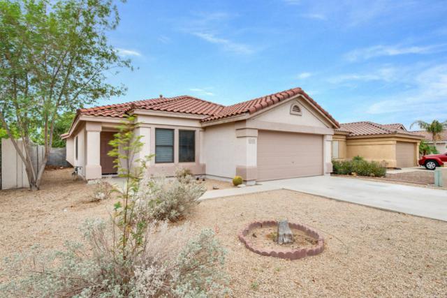 10513 W Louise Drive, Peoria, AZ 85383 (MLS #5822799) :: The Laughton Team