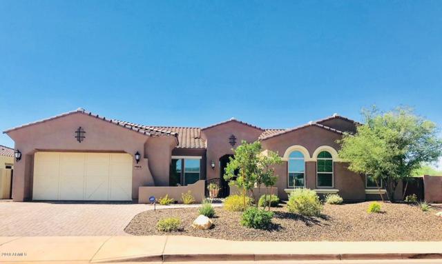 12411 W Tyler Trail, Peoria, AZ 85383 (MLS #5822817) :: The Laughton Team