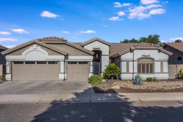 21416 N 70TH Drive, Glendale, AZ 85308 (MLS #5822833) :: The W Group