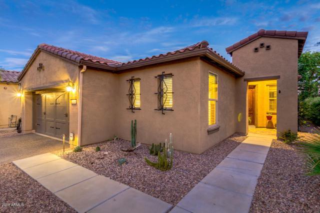12809 W Jasmine Trail, Peoria, AZ 85383 (MLS #5822857) :: The Laughton Team