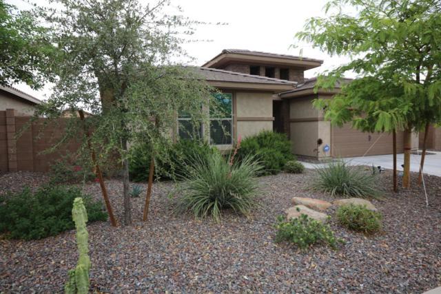 4556 W South Butte Road, Queen Creek, AZ 85142 (MLS #5822859) :: Team Wilson Real Estate
