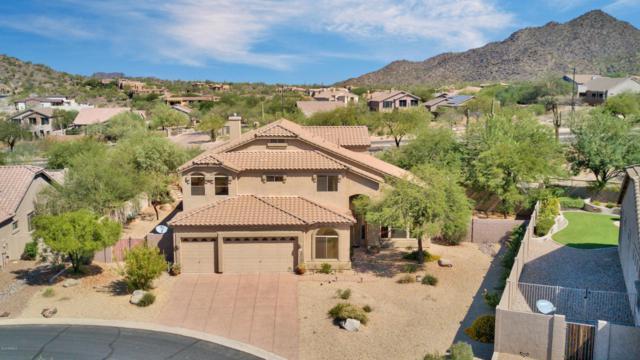7538 E Tyndall Circle, Mesa, AZ 85207 (MLS #5822861) :: Group 46:10