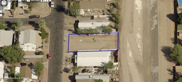 1219 S Palo Verde Street, Mesa, AZ 85209 (MLS #5822863) :: Group 46:10