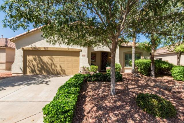 9016 E Obispo Avenue, Mesa, AZ 85212 (MLS #5822902) :: Lux Home Group at  Keller Williams Realty Phoenix