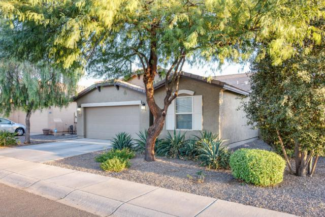 4947 E Amarillo Drive, San Tan Valley, AZ 85140 (MLS #5822903) :: Kelly Cook Real Estate Group