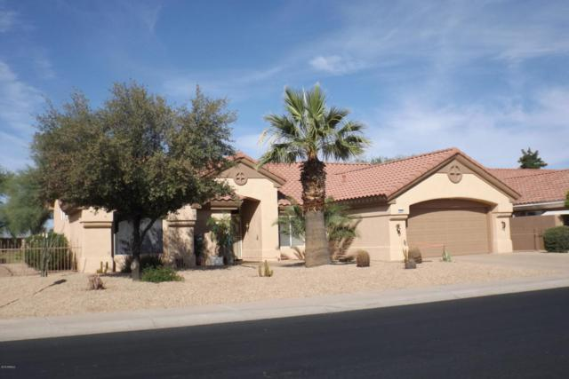 20804 N Limousine Drive, Sun City West, AZ 85375 (MLS #5822904) :: Kelly Cook Real Estate Group