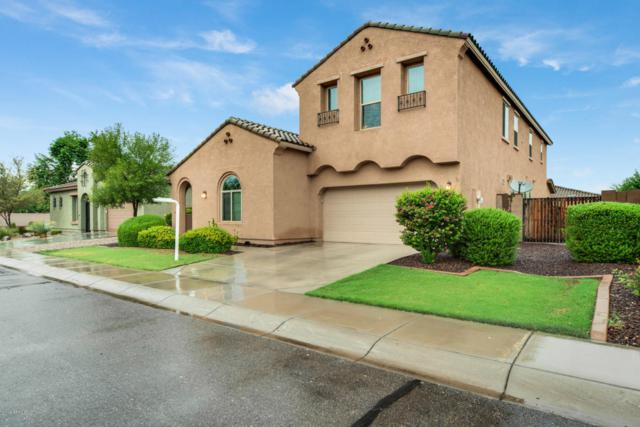 1644 E Mia Lane, Gilbert, AZ 85298 (MLS #5822910) :: Group 46:10