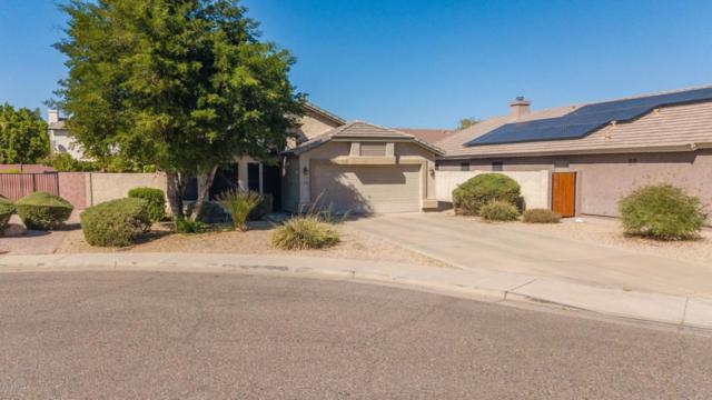 6512 W Adobe Drive, Glendale, AZ 85308 (MLS #5822928) :: The Laughton Team