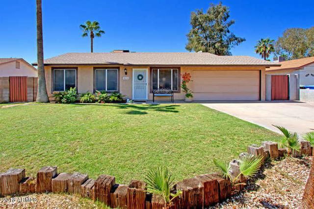18238 N 26TH Place, Phoenix, AZ 85032 (MLS #5822930) :: Yost Realty Group at RE/MAX Casa Grande