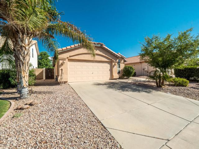 1424 E Century Avenue, Gilbert, AZ 85296 (MLS #5822935) :: Group 46:10