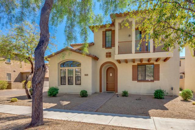 2419 W Jake Haven, Phoenix, AZ 85085 (MLS #5822946) :: Group 46:10