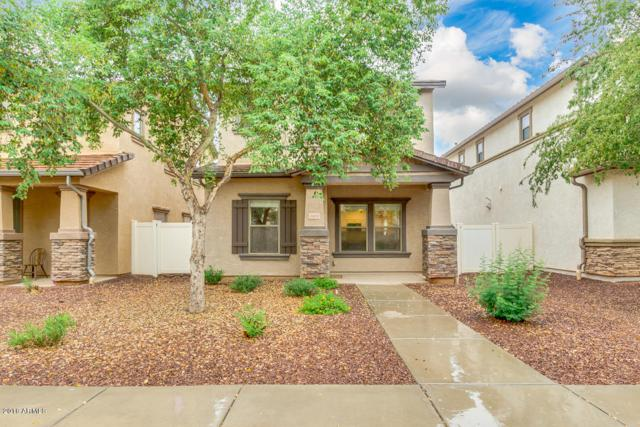 3883 E Jasper Drive, Gilbert, AZ 85296 (MLS #5822951) :: Group 46:10