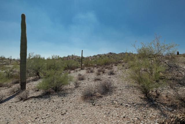 0 N Homestead, Queen Creek, AZ 85142 (MLS #5822974) :: Team Wilson Real Estate