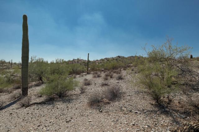 0 N Homestead Lane, Queen Creek, AZ 85142 (MLS #5822986) :: Team Wilson Real Estate