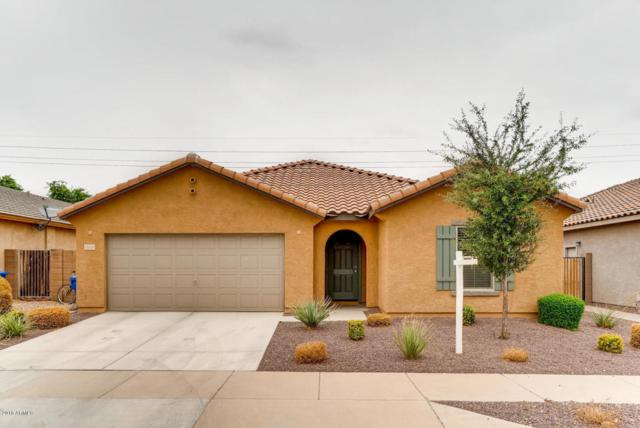 15740 W Shaw Butte Drive, Surprise, AZ 85379 (MLS #5822991) :: Brett Tanner Home Selling Team