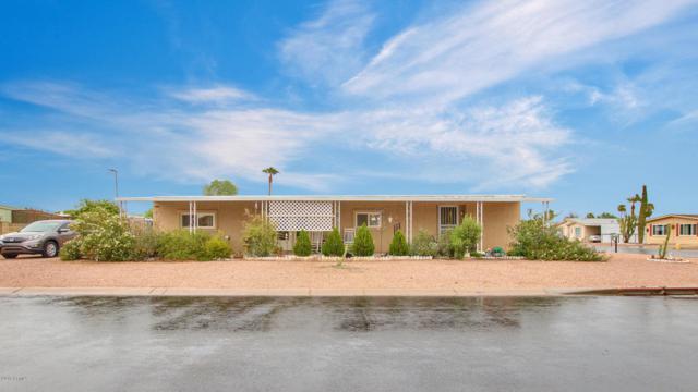5406 E Arcadia Avenue, Mesa, AZ 85206 (MLS #5822993) :: Kelly Cook Real Estate Group