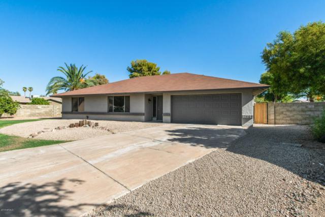 17221 N Eagle Court, Glendale, AZ 85308 (MLS #5823000) :: Occasio Realty